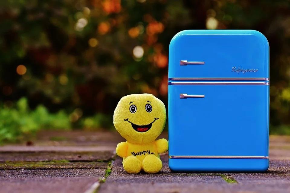 Cum alegi frigiderul ideal